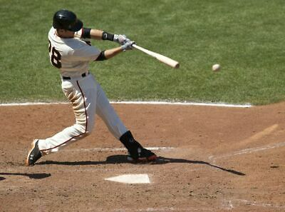 197904 Buster Posey Wall Print Poster CA