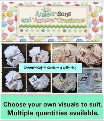 AUTISM Choose your own visual cards to suit on a split ring ~ visual learner