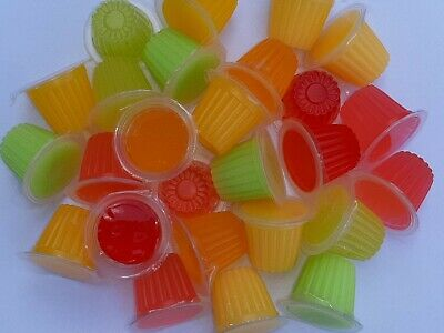 12 Beetle/Insect/reptile/birds Jelly pots mixed flavours at best price