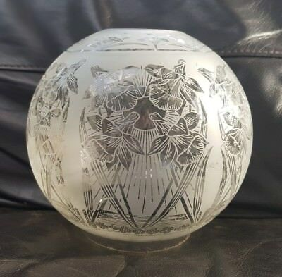 "Original Victorian Glass Oil Lamp Shade Daffodils Duplex 4"" Full Acid Etched"