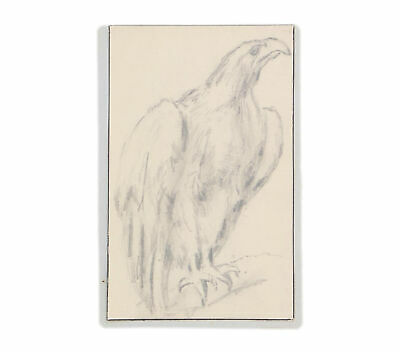 A vintage drawing of an eagle 1930's - 1940's Pencil Original