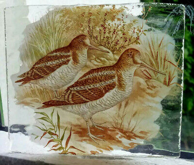 Stained Glass Snipe Birds - Kiln fired transfer fragment hunting game birds pane