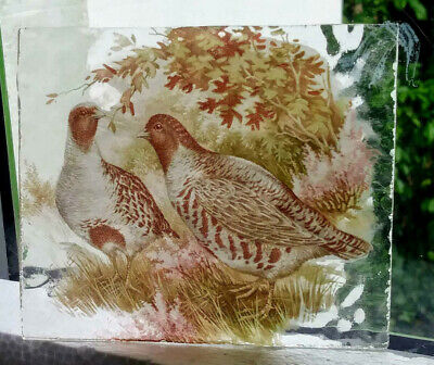 Stained Glass Partridge Birds - Kiln fired transfer fragment hunting game pane