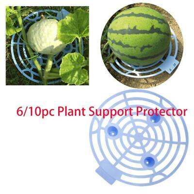 Melon Squash Cradle Watermelon Cradle Plant Support Garden Home Support Holder