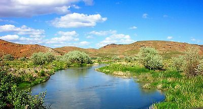 0.51 Ac~Nevada Ranch Land~Rare~Crescent Vly~Gold/Silver~Near Elko~Two Lots~Nr!