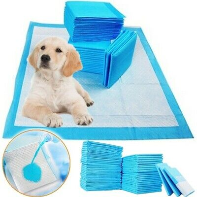 Large Puppy Pads Dog Pet Toilet House Training Wee Potty Pee Mats Cat Poo Pad