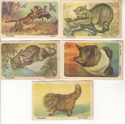 Cereal Foods Australia - Cats of the World 5 cards