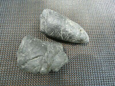 2 pieces of Megalodon Coprolite Poop Shark Tooth Well over 2 Pounds