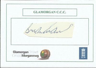 Cricket Autograph Brian Evans Glamorgan CCC Signed Card 10 x 7cm Z8959