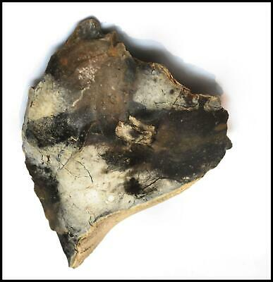 Paleolithic mousterian Neanederthal large scraper chopper hand axe saw British