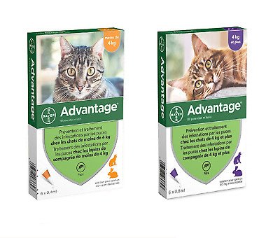 Advantage Spot On Pipettes Antiparasitaire Protection Anti-Puces pour Chat Lapin