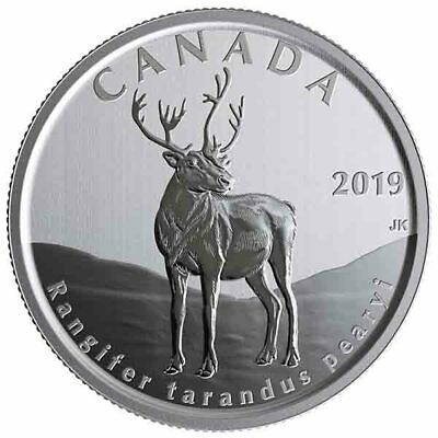 2019 Canada 50 cent Peary Caribou from Wildlife treasures set - coin in 2 x 2