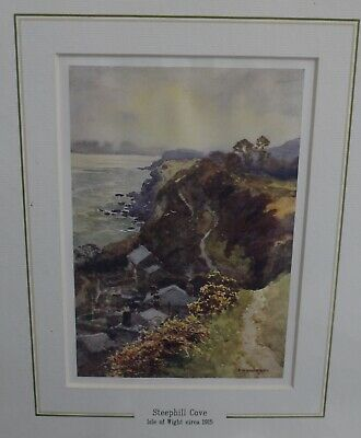 Original Vintage Mounted Print E Haslehust c1915 Steephill Cove Isle of Wight