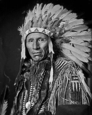 Native American Indian CHIEF EAGLE DOG 8x10 Photo Yankton Sioux Print Poster