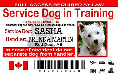 Canadian Service Dog ID Card, Service Dog In Training Wallet Card, Plastic PVC,