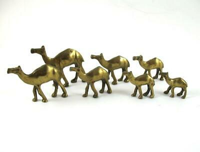 "Vintage Set of 7 /  Herd Brass Miniature Camels Camel   2"" High"