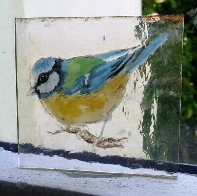 Stained Glass BlueTit - vintage Kiln fired transfer painted fragment bird pane!