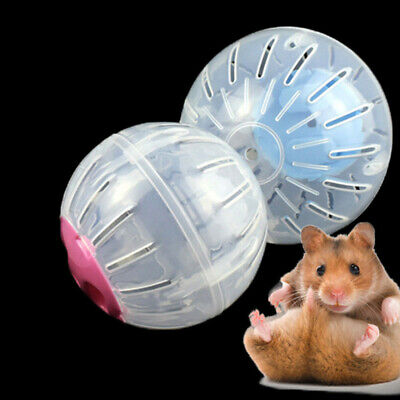 Pet Hamster Guinea Pig Exercise Running Ball Play Gyro Toy Plastic  Funny CP10