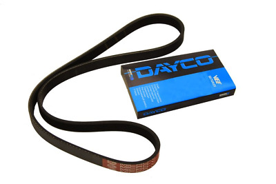 NEW DAY5PK1815 DAYCO Multi-V-belt  MVB7i09 OE REPLACEMENT