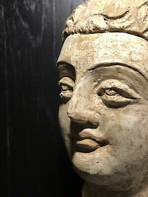 Lovely Authentic 3-4th Century A.D. Gandhara 犍陀罗 Stucco Buddha Head