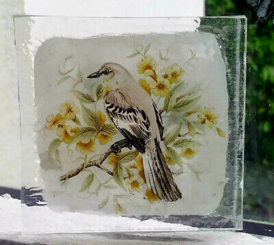 Stained Glass Mockingbird bird -  Kiln fired fragment pane!