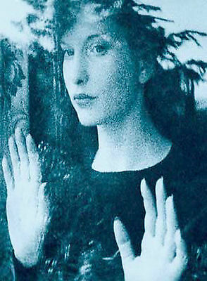 In the Mirror of Maya Deren DVD, Maya Deren,Chao Li Chi,Stan Brakhage,Miriam Ars