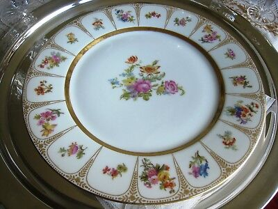 "Limoges  France... Wm. Guerin & Co. Limoges France..9 7/8"" Dinner Plate. Nice"