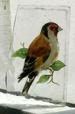 Stained Glass Goldfinch bird - Kiln fired transfer fragment pane!