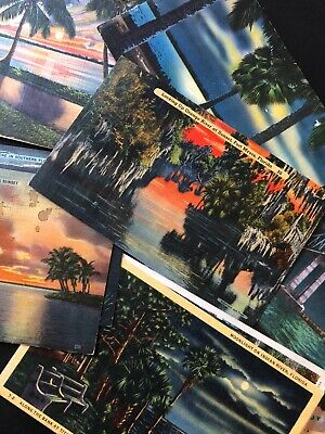 Florida Post Card lot of 14 Sunset Moon Light Palm Trees Water