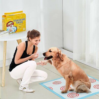 """100 Pet Disposable Training Pads for Dog and Puppy Underpads, 24"""" x 24"""" PE-PAD"""