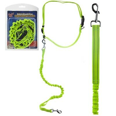 Hands Free 2m Running Jogging Dog Lead Walking Adjustable Leash Strong Bungie