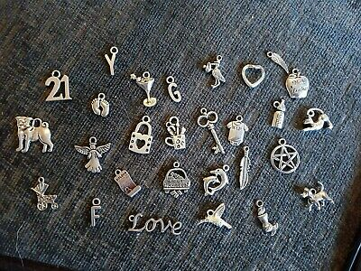 Job Lot of 300+ Tibetan Silver Mixed Themed Pendants Charms Baby Love Dog Cat