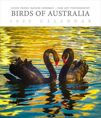 Birds of Australia Steve Parish 2020 Deluxe Wall Calendar by Browntrout