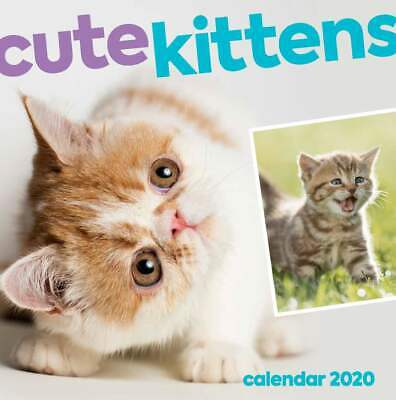 Cute Kittens 2020 Square Wall Calendar by Browntrout
