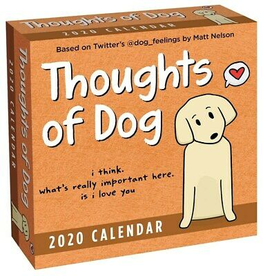 Thoughts of Dog 2020 Day-to-Day Boxed Calendar