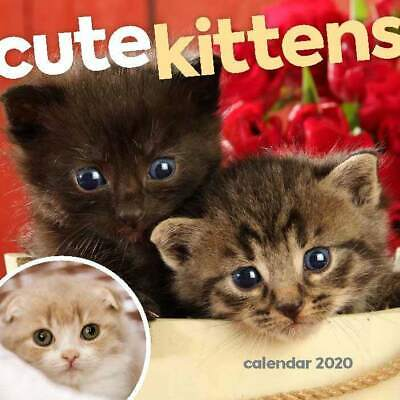 Cute Kittens 2020 Mini Wall Calendar by Browntrout