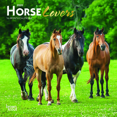 Horse Lovers 2020 Mini FOIL Wall Calendar by Browntrout