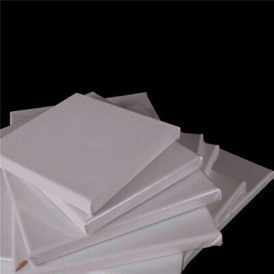 Blank Square Artist Canvas Wooden Board Frame Primed Oil Acrylic*Paint Tool CPEV