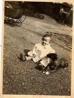Old Antique Vintage Photograph Adorable Baby Sitting on Ground With Dog Carriage