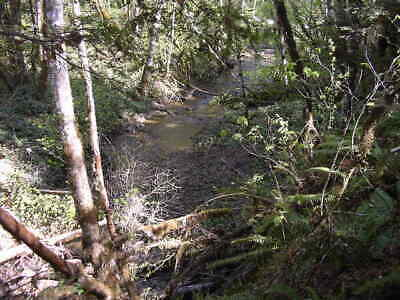 Oregon 20 acre unpatented placer mining claim claims gold mine land nice RV Spot
