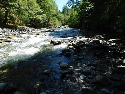CALIFORNIA South Fork Salmon River Placer Gold Mining Claim Claims 40 acres