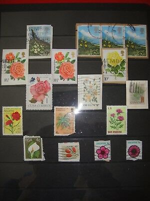Set Of Flowers And Plants Thematic Mixed World Stamps