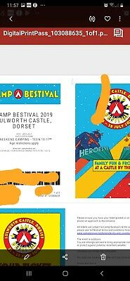 Camp Bestival 2019 Teen Ticket, Weekend Camping, free delivery. Emailed ticket