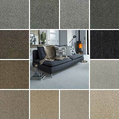 Hardwearing Flecked Carpet, Stain Resistant Twist Pile, Action Backed, 5m Wide