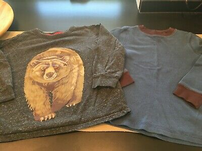 Lot of 2 Carter's Boys Size 5 Long Sleeved T-Shirts Gray with Bear Teal Thermal