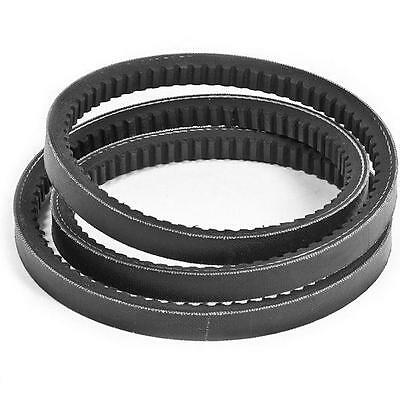 BX31 Major Branded BX Cogged V Belt 17x11mm 31""