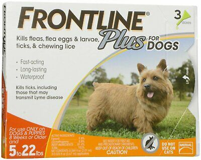 Frontline Plus Flea & Tick Treatment for Small Dogs 2-22 pounds 3 doses