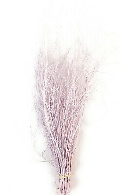 Decorative Coloured Birch Twigs and branches -Lilac 90 cm's - 25 Stems