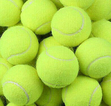 12 New Tennis Balls Yellow Ball Games Dog Pet Toy Pets Bouncing Sports Games Fun