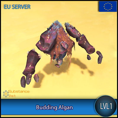 Budding Algan lvl1 Pet BFA | All Europe Server | WoW Warcraft Loot